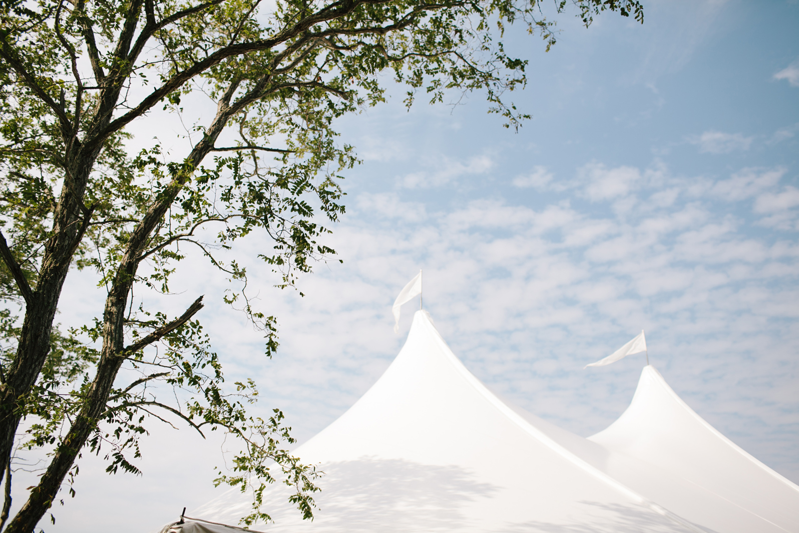 outdoor tented wedding on cape cod